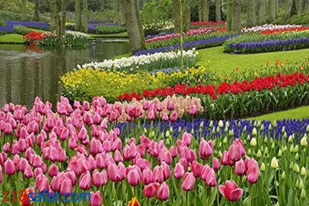 1434926266952 - زیباترین باغهای جهان