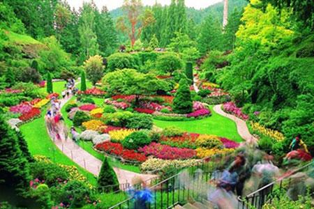 143492626823 - زیباترین باغهای جهان