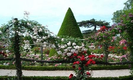 1434926269444 - زیباترین باغهای جهان