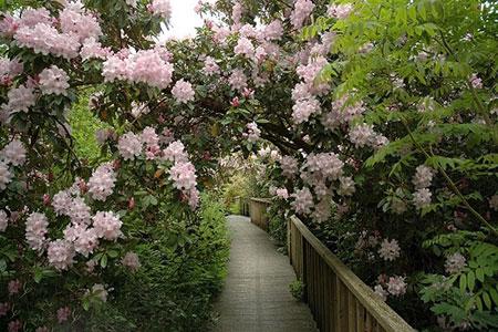 1434926405482 - زیباترین باغهای جهان