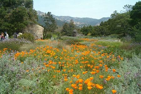 1434926406743 - زیباترین باغهای جهان